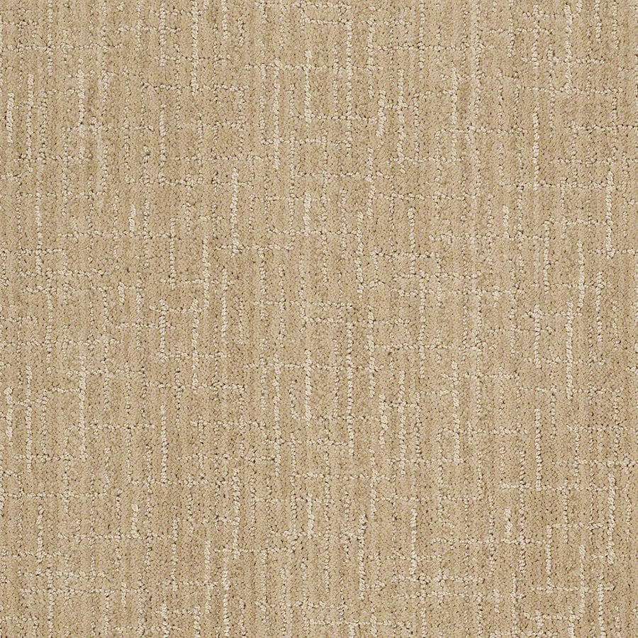 STAINMASTER Active Family Unquestionable 12-ft W x Cut-to-Length Cashmere Sweatr Berber/Loop Interior Carpet