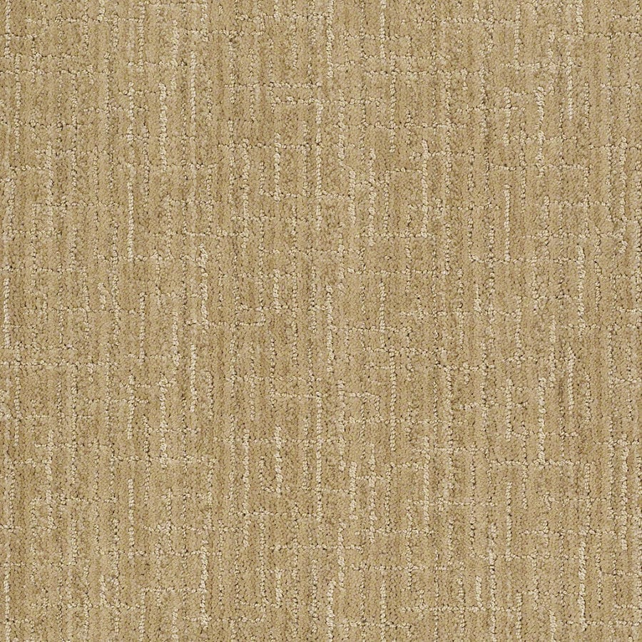 STAINMASTER Active Family Unquestionable 12-ft W x Cut-to-Length Banana Split Berber/Loop Interior Carpet