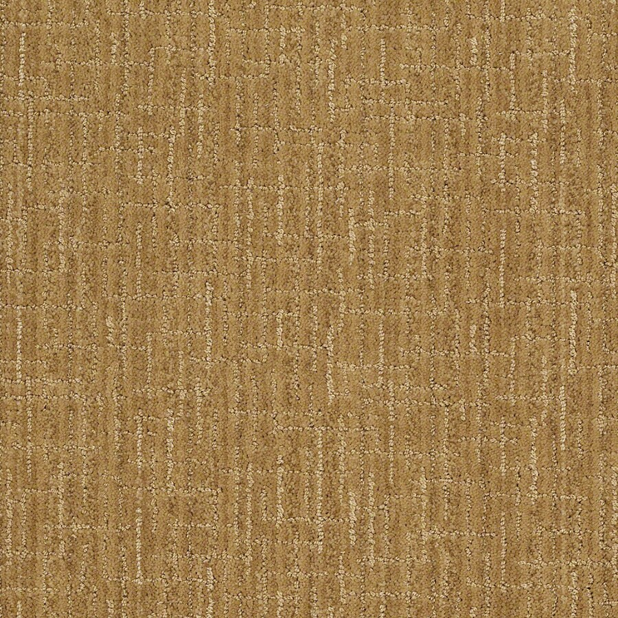 STAINMASTER Active Family Unquestionable Amber Grain Berber Indoor Carpet