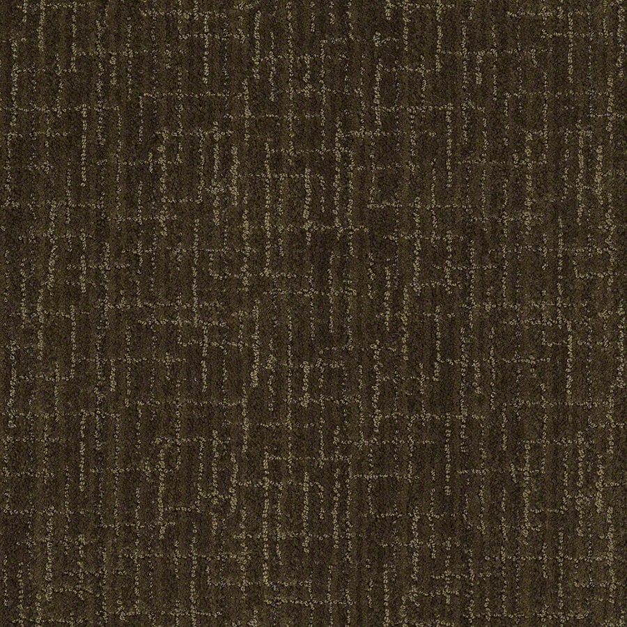 STAINMASTER Active Family Unquestionable 12-ft W x Cut-to-Length Kelp Berber/Loop Interior Carpet