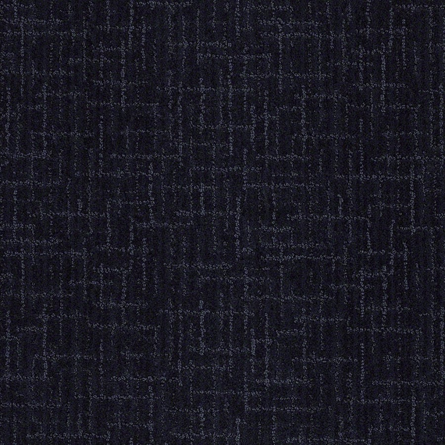STAINMASTER Active Family Unquestionable Blueberry Muffn Berber Indoor Carpet