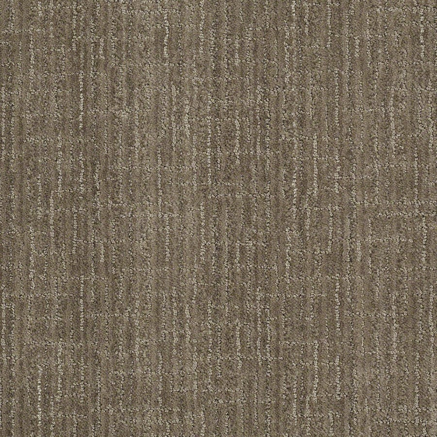 STAINMASTER Active Family Unquestionable 12-ft W x Cut-to-Length Dolphin Berber/Loop Interior Carpet