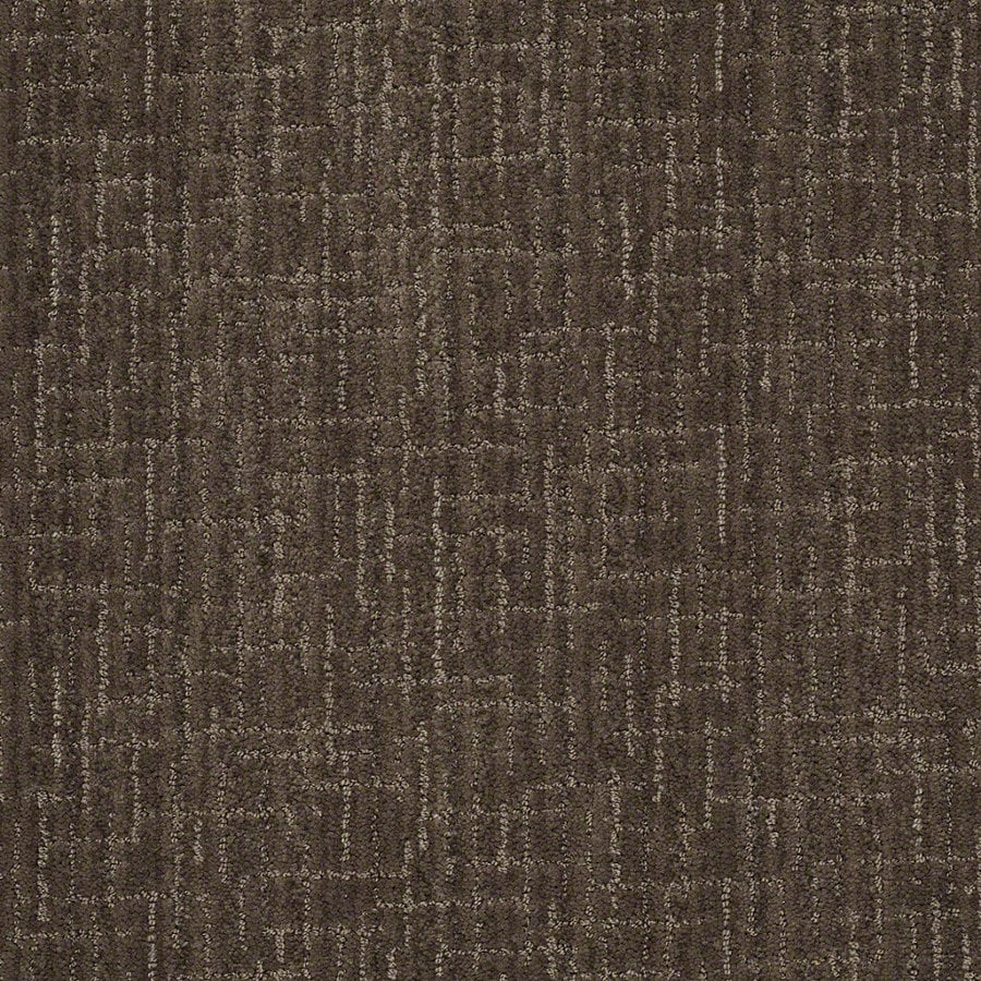 STAINMASTER Active Family Unquestionable Chinchilla Berber/Loop Interior Carpet