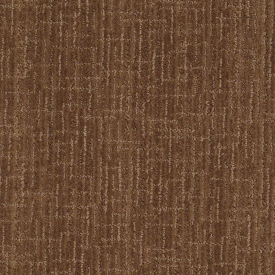 STAINMASTER Active Family Unquestionable Autumn Bark Berber Indoor Carpet