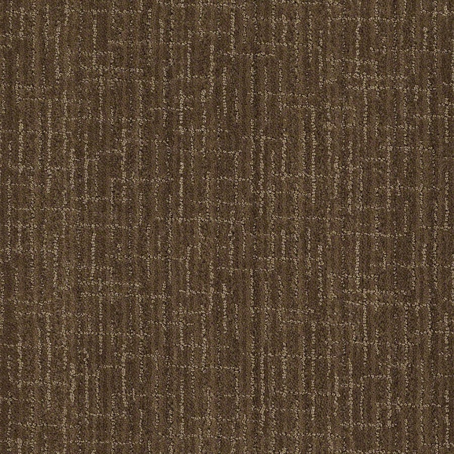 STAINMASTER Active Family Unquestionable Buffalo Trail Berber/Loop Interior Carpet
