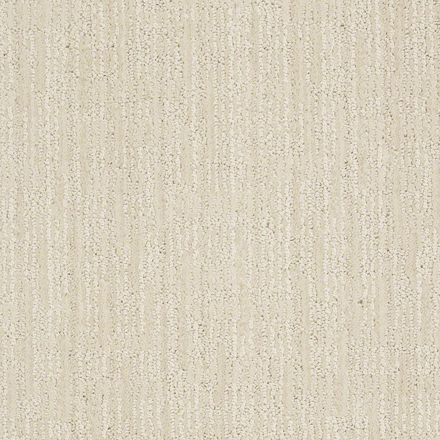 STAINMASTER Active Family Unmistakable Latte Froth Berber/Loop Interior Carpet