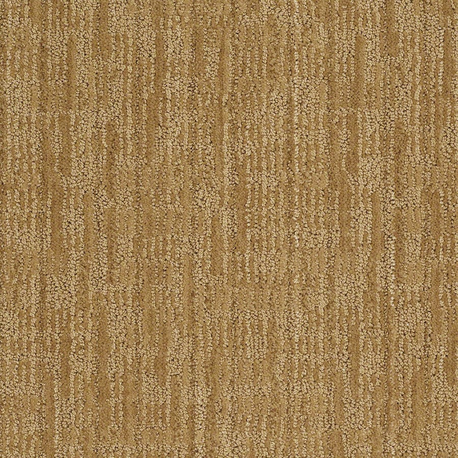 STAINMASTER Active Family Unmistakable 12-ft W x Cut-to-Length Amber Grain Berber/Loop Interior Carpet