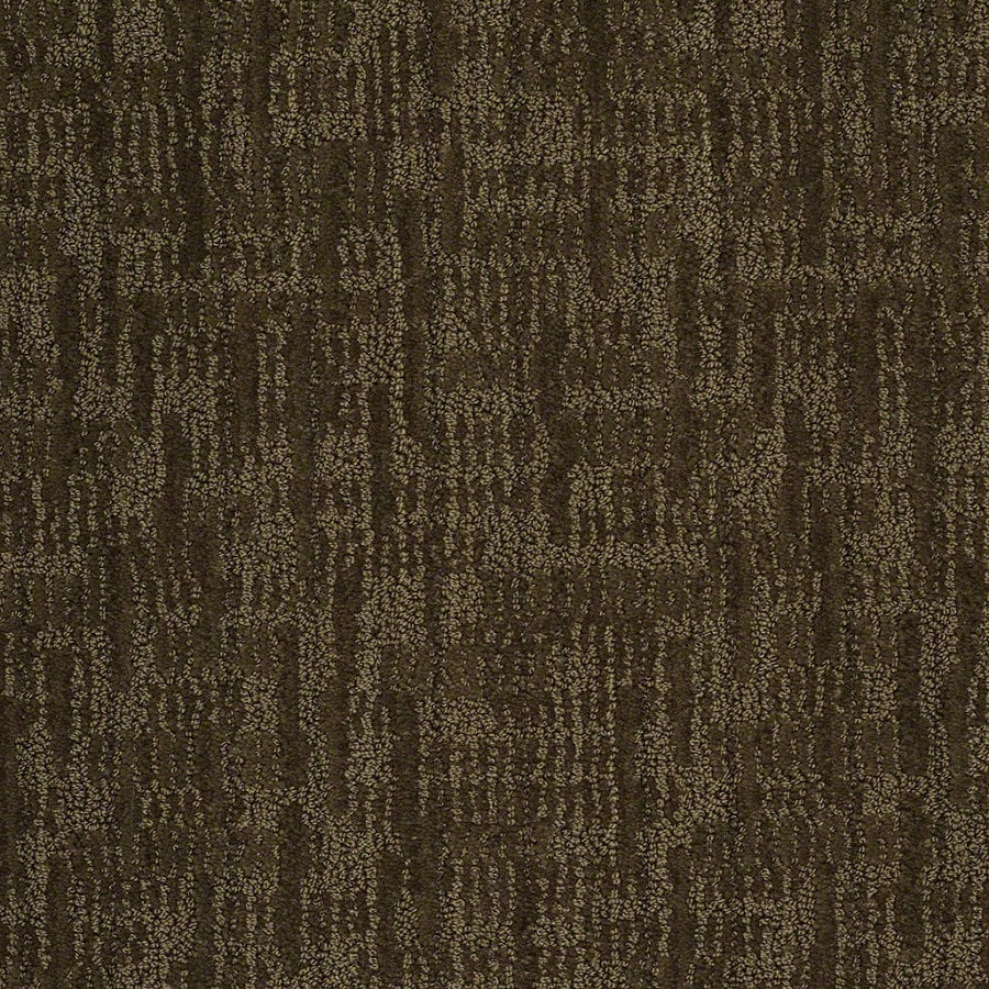 STAINMASTER Active Family Unmistakable Kelp Berber Indoor Carpet