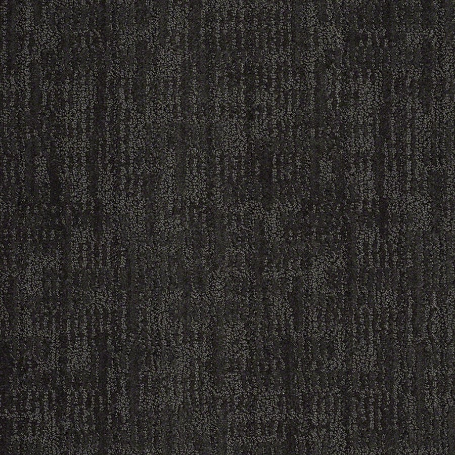 STAINMASTER Active Family Unmistakable Magic Night Berber Indoor Carpet