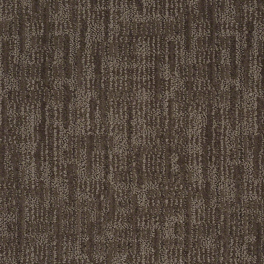 STAINMASTER Active Family Unmistakable Chinchilla Berber/Loop Interior Carpet