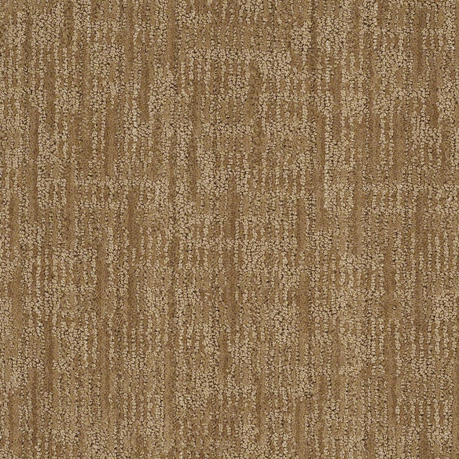 STAINMASTER Active Family Unmistakable Curry Berber/Loop Interior Carpet