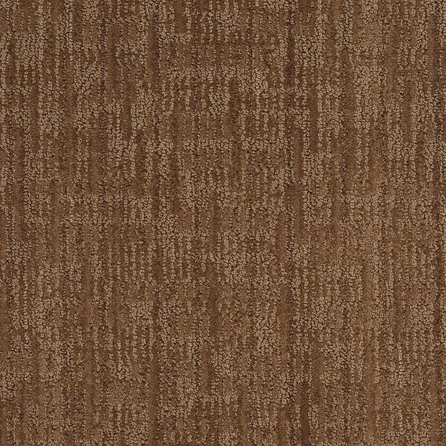 STAINMASTER Active Family Unmistakable Autumn Bark Berber/Loop Interior Carpet