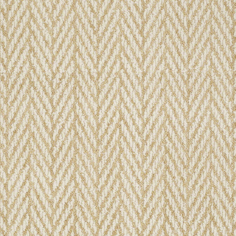 STAINMASTER Active Family Apparent Beauty 12-ft W Fresh Citrus Berber/Loop Interior Carpet