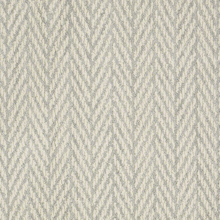 STAINMASTER Active Family Apparent Beauty Silver Spruce Berber Indoor Carpet