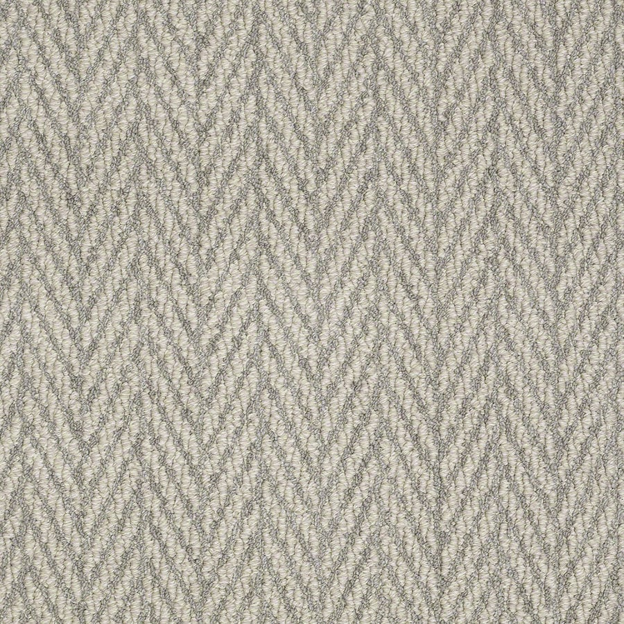 STAINMASTER Active Family Apparent Beauty 12-ft W x Cut-to-Length Silverado Berber/Loop Interior Carpet