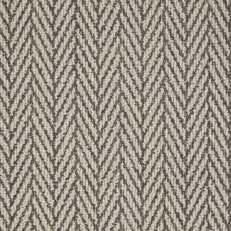STAINMASTER Active Family Apparent Beauty Chateau Berber/Loop Interior Carpet