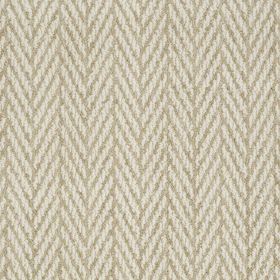 STAINMASTER Active Family Apparent Beauty Fine Grain Berber/Loop Interior Carpet