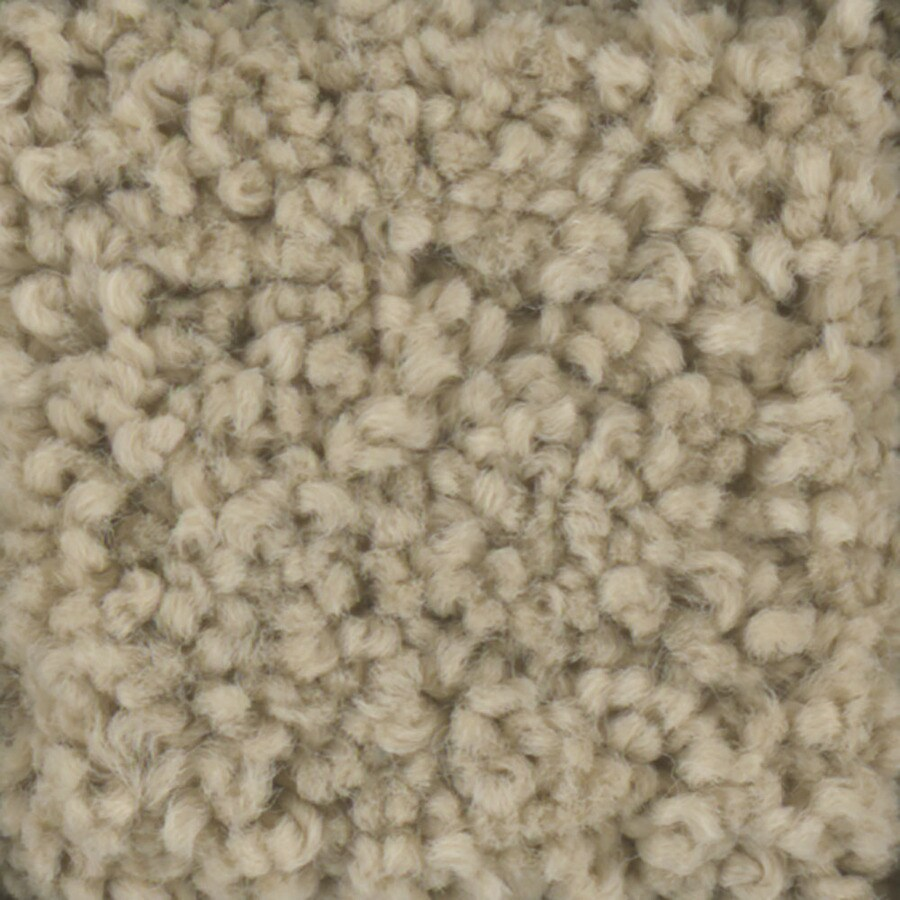 STAINMASTER TruSoft Subtle Beauty Sombrero Textured Indoor Carpet