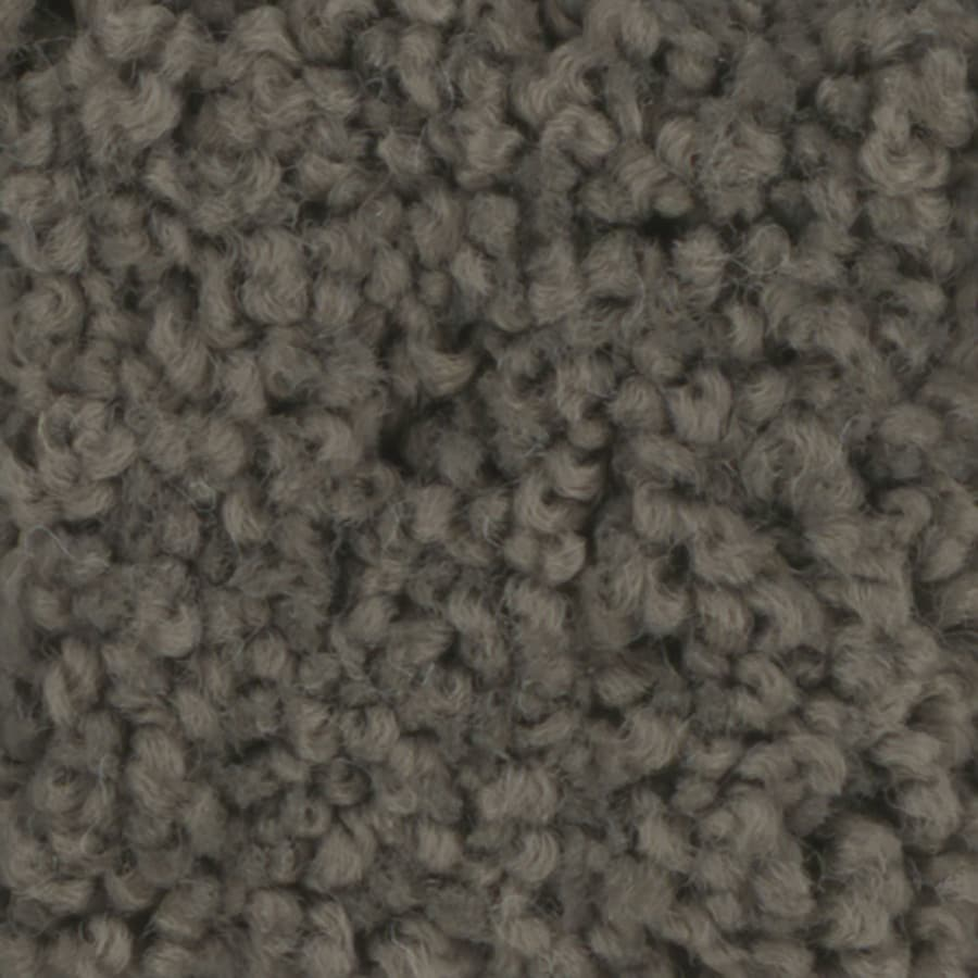 STAINMASTER TruSoft Subtle Beauty I 12-ft W x Cut-to-Length Riverbed Textured Interior Carpet