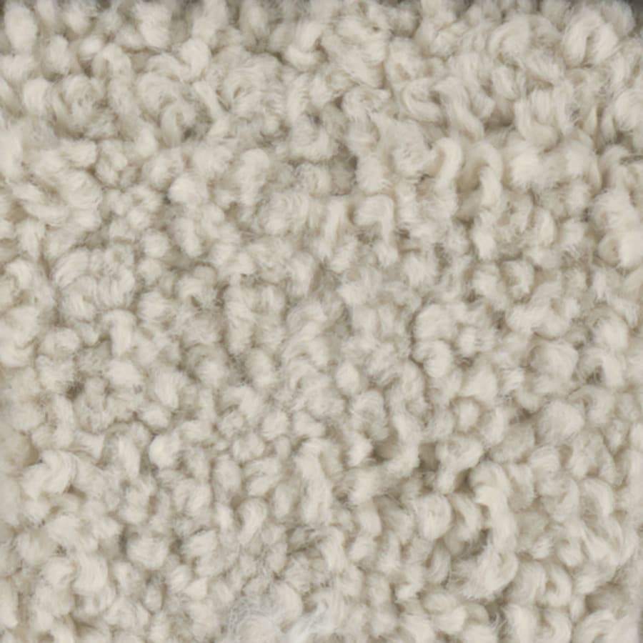 STAINMASTER TruSoft Subtle Beauty 2 12-ft W x Cut-to-Length Khaki Textured Interior Carpet