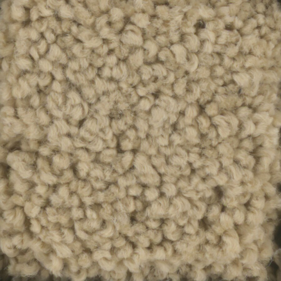 STAINMASTER TruSoft Subtle Beauty Caramel Textured Interior Carpet