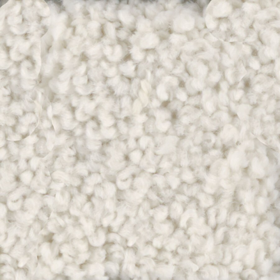 STAINMASTER TruSoft Subtle Beauty 12-ft W x Cut-to-Length Coconut Textured Interior Carpet