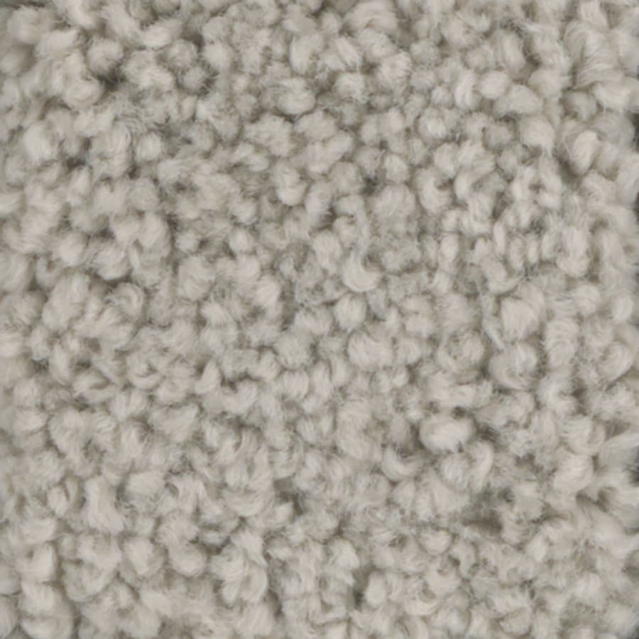 STAINMASTER TruSoft Subtle Beauty 12-ft W x Cut-to-Length Vanilla Wafer Textured Interior Carpet