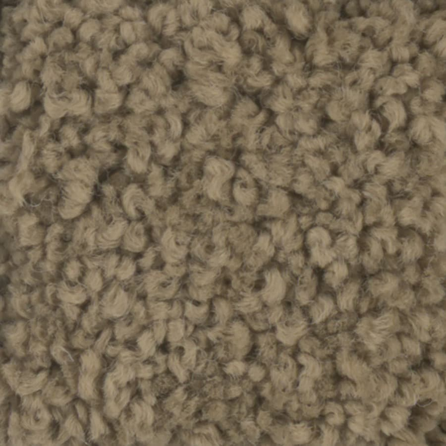 STAINMASTER TruSoft Subtle Beauty 12-ft W x Cut-to-Length Dry Creek Textured Interior Carpet