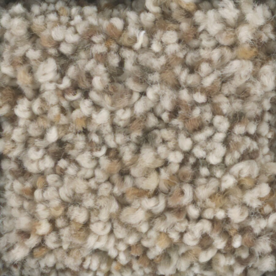 STAINMASTER TruSoft Pronounced Beauty 1 Sprout Textured Indoor Carpet