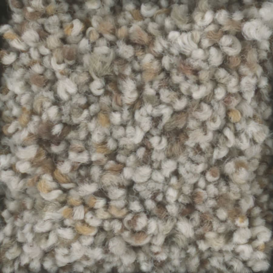 STAINMASTER TruSoft Pronounced Beauty 1 Terraceb Textured Interior Carpet