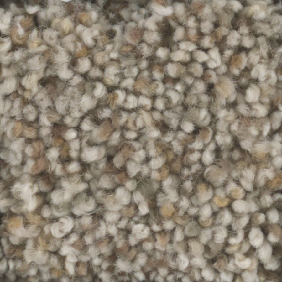 STAINMASTER Trusoft Pronounced Beauty 2 Pebble Textured Interior Carpet