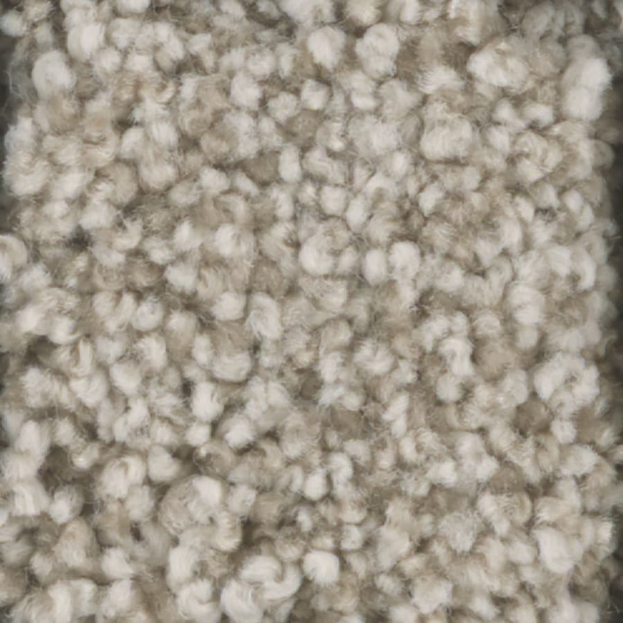 STAINMASTER TruSoft Dynamic Beauty 1 Glaze Textured Indoor Carpet