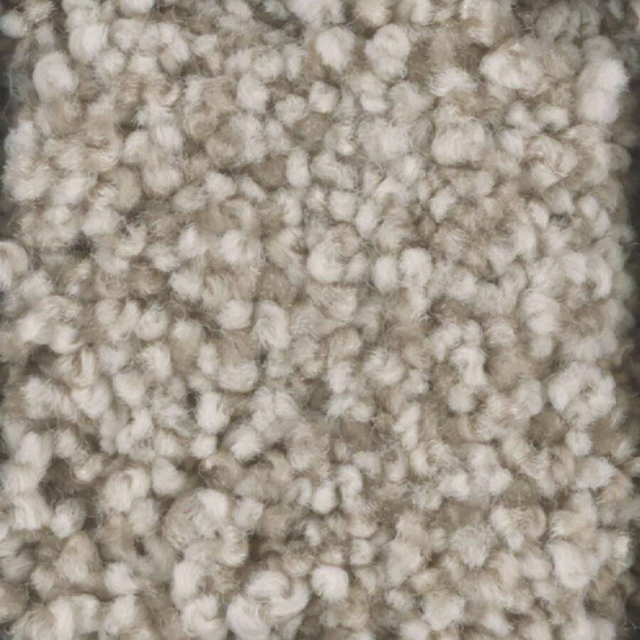 STAINMASTER TruSoft Dynamic Beauty 1 Glaze Textured Interior Carpet