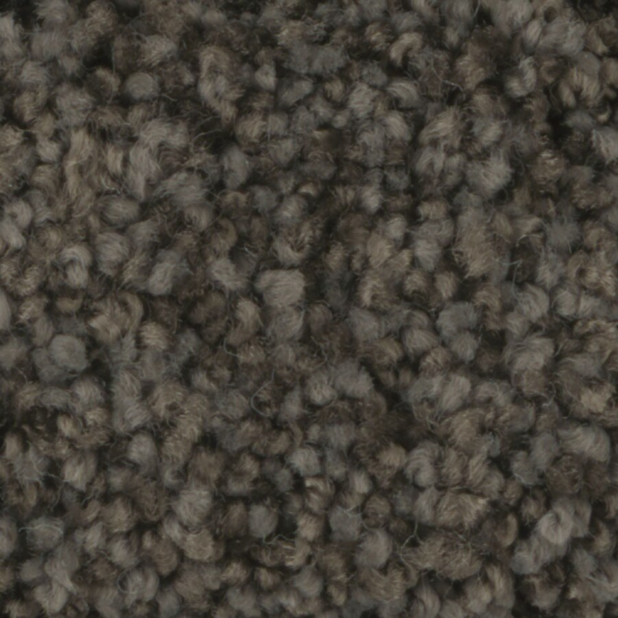 STAINMASTER TruSoft Dynamic Beauty 1 12-ft W x Cut-to-Length Riverbed Textured Interior Carpet
