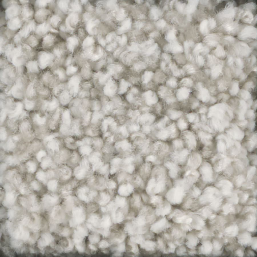 STAINMASTER TruSoft Dynamic Beauty 2 12-ft W x Cut-to-Length Spider Web Textured Interior Carpet