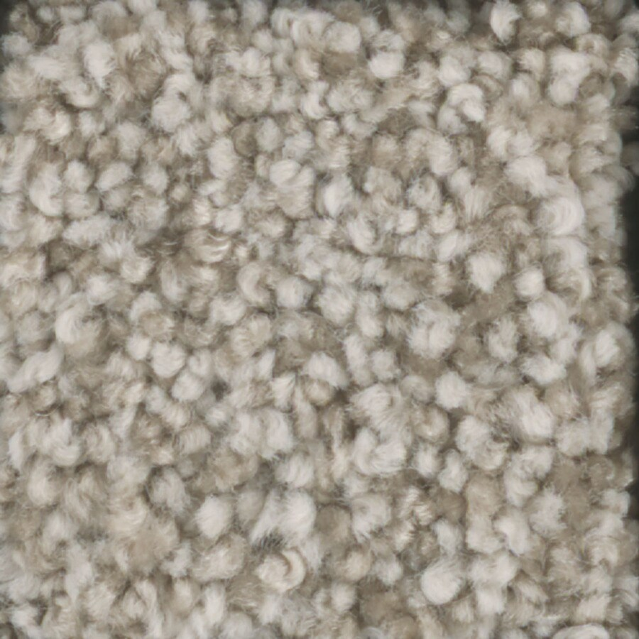 STAINMASTER Trusoft Dynamic Beauty 2 Vanilla Wafer Textured Interior Carpet