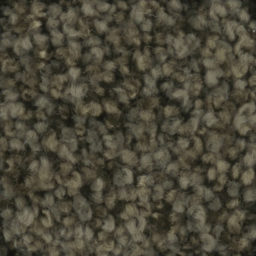 STAINMASTER TruSoft Dynamic Beauty 2 Mistletoe Textured Indoor Carpet