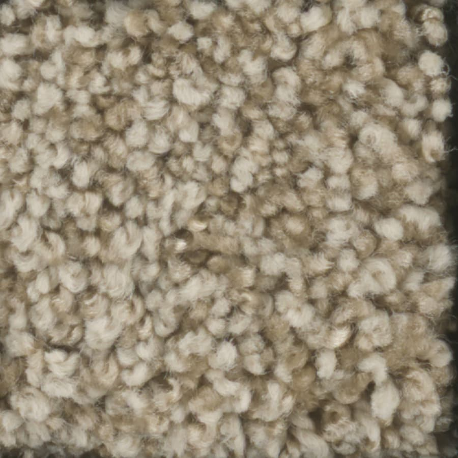 STAINMASTER TruSoft Dynamic Beauty 2 12-ft W x Cut-to-Length Sombrero Textured Interior Carpet