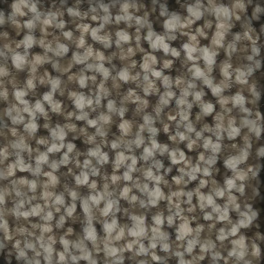 STAINMASTER TruSoft Dynamic Beauty 2 12-ft W x Cut-to-Length Scarecrow Textured Interior Carpet