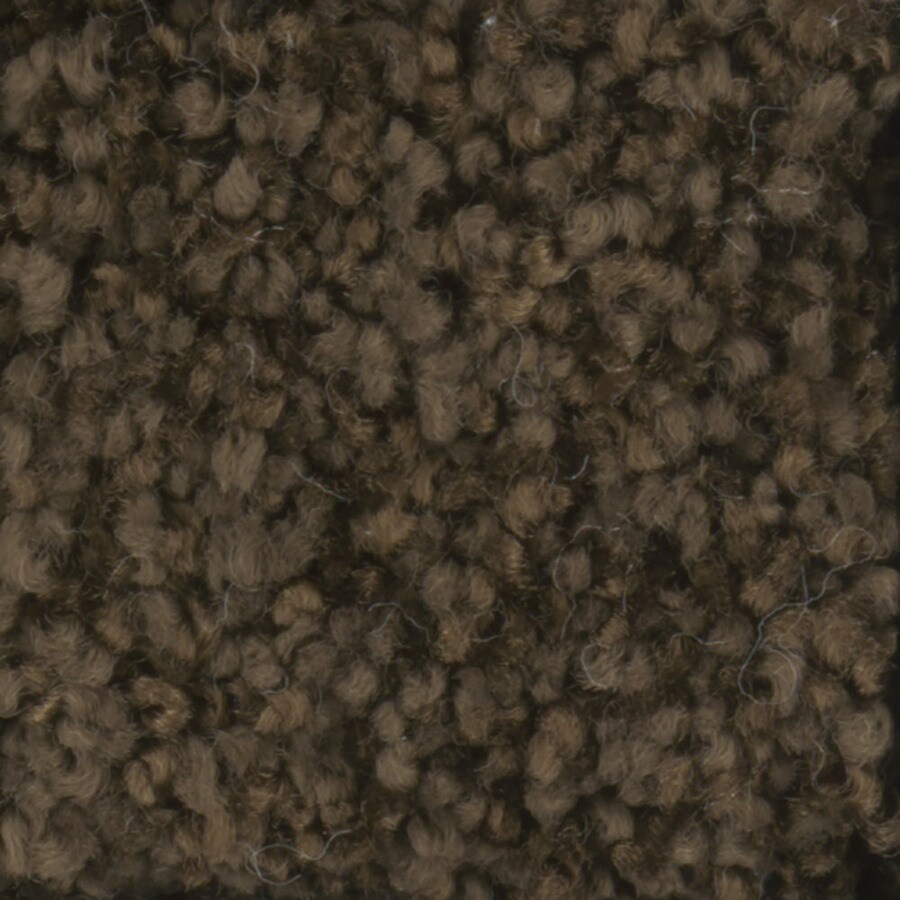 STAINMASTER TruSoft Dynamic Beauty 2 Fudge Textured Interior Carpet