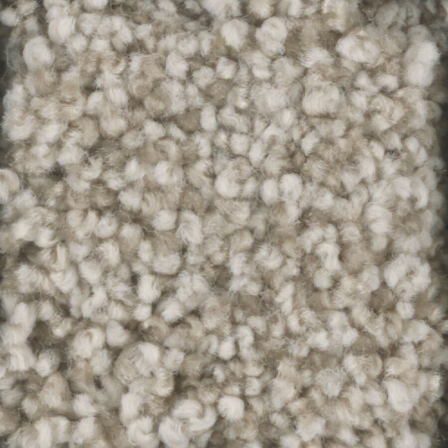 STAINMASTER TruSoft Dynamic Beauty 3 12-ft W x Cut-to-Length Glaze Textured Interior Carpet
