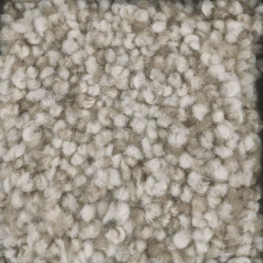 STAINMASTER TruSoft Dynamic Beauty 3 12-ft W x Cut-to-Length Vanilla Wafer Textured Interior Carpet