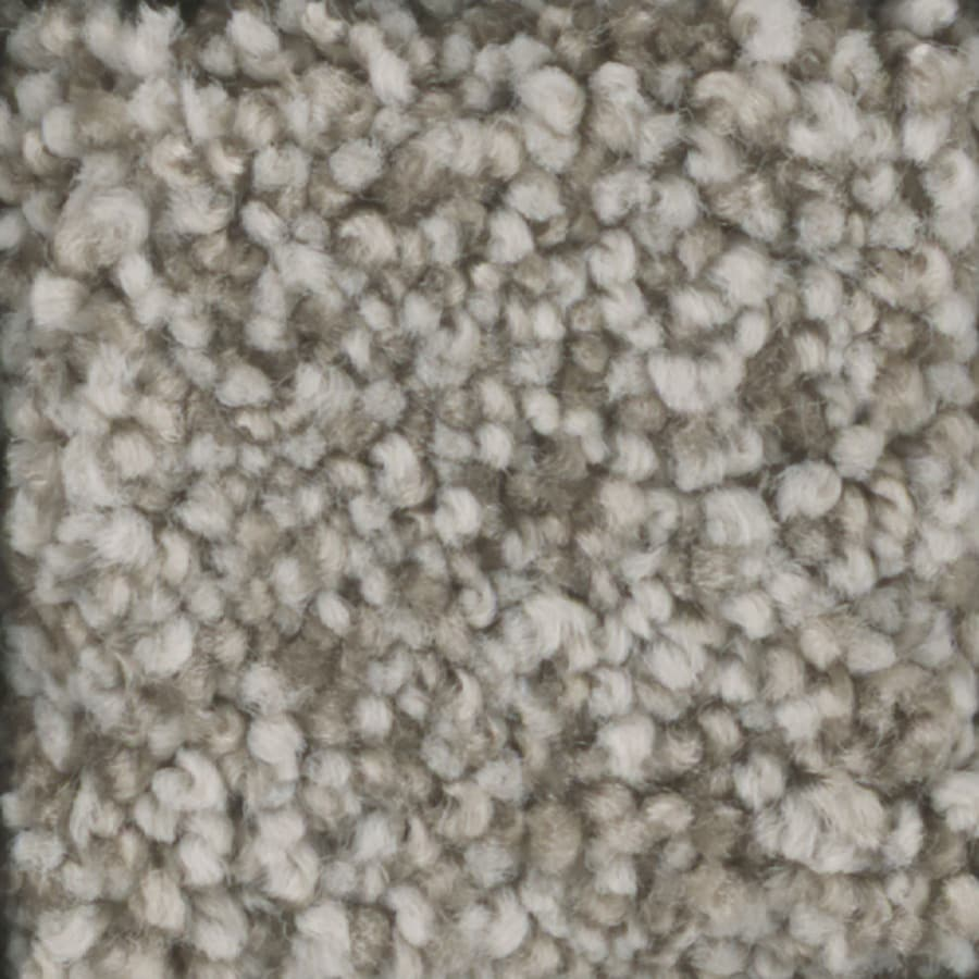 STAINMASTER Trusoft Dynamic Beauty 3 Parchment Textured Interior Carpet
