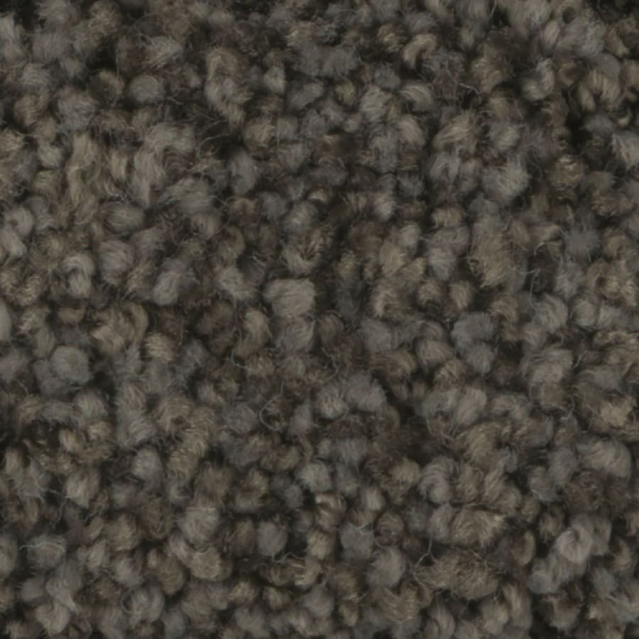STAINMASTER TruSoft Dynamic Beauty 3 12-ft W x Cut-to-Length Riverbed Textured Interior Carpet