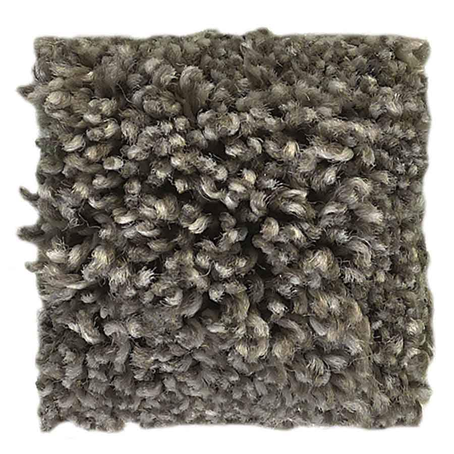STAINMASTER Petprotect Baxter II Doodle Textured Interior Carpet