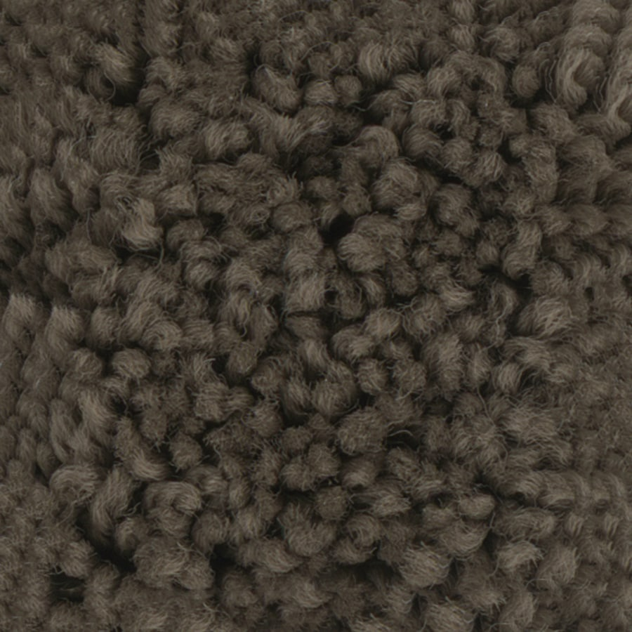 STAINMASTER PetProtect Baxter II Roxy Textured Indoor Carpet