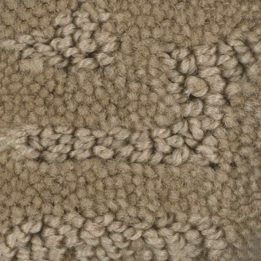 STAINMASTER PetProtect Belle Max Berber/Loop Interior Carpet
