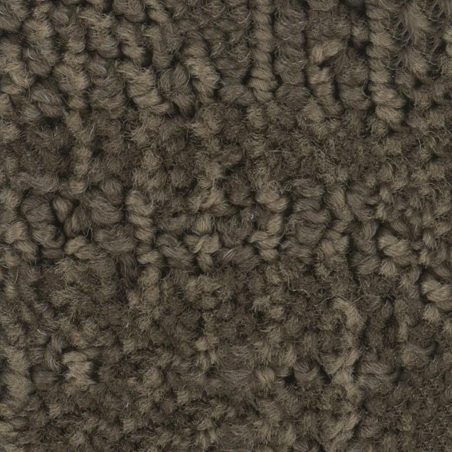 STAINMASTER PetProtect Bianca Husky Berber Indoor Carpet