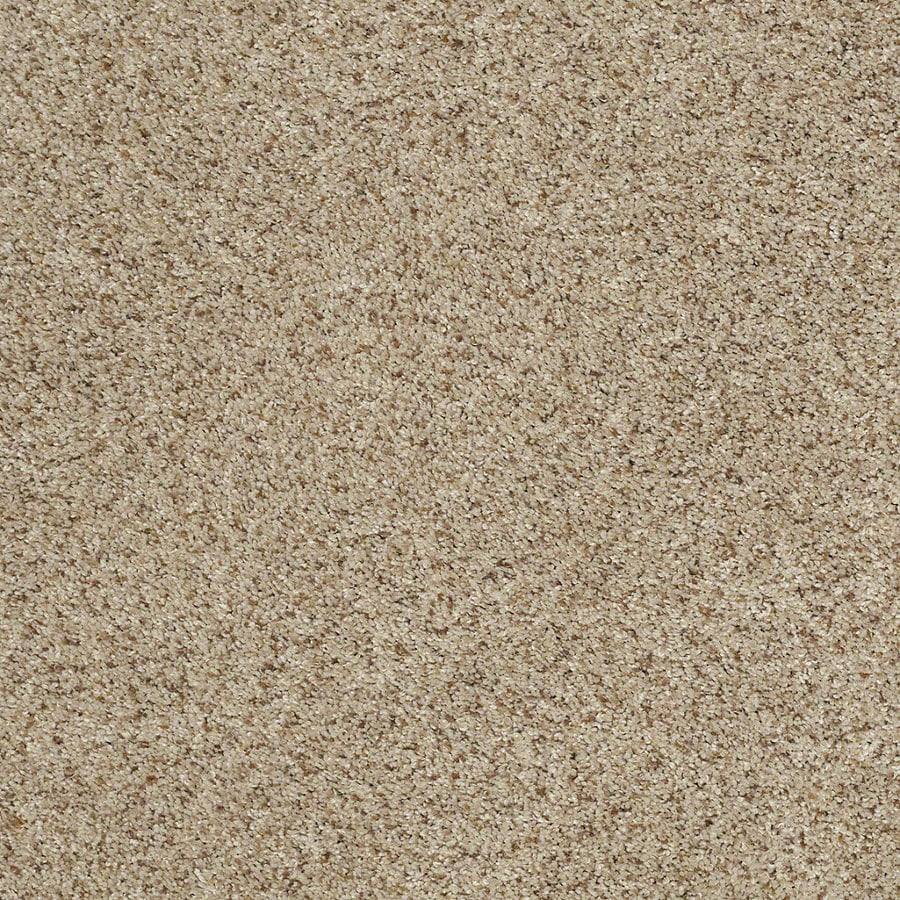 STAINMASTER TruSoft Luscious IV (S) Fence Post Textured Indoor Carpet