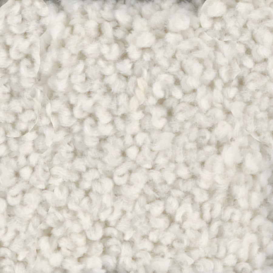 STAINMASTER TruSoft Subtle Beauty Coconut Textured Interior Carpet